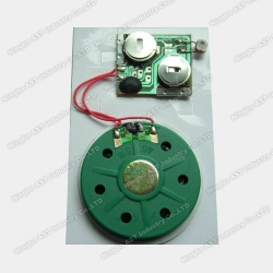 Motion Sensor Sound Module, Musical Module, Musical Chip
