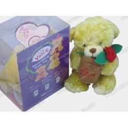 Bear Soft Toy, Plush Toy, Stuffed Toy, Recording Plush Toy