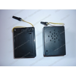 Motion Sensor Talking Box, Motion Sensor Sound Module