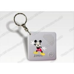 Voice Recorder Keychain, Digital Keychain, Voice Keychain