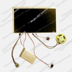 Video Mailer, MP4 Sound Module, Video Module