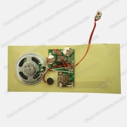 Sound Module Greeting Cards, Sound Chip, Voice Module