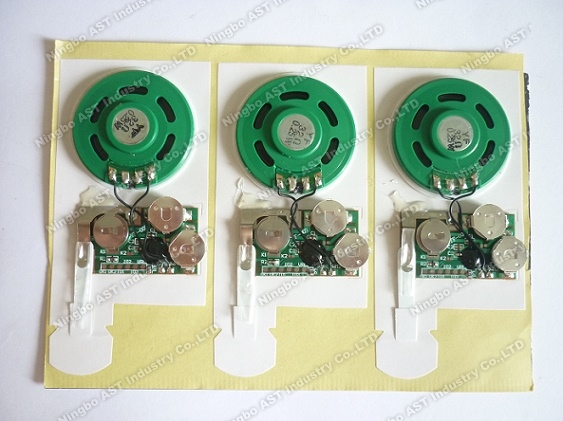 Sound module for greeting cards,vocal module,sound chip,voice module,