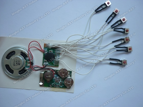 Sound module with Multiple keys,sound chip with multiple buttons,voice module,vocal module