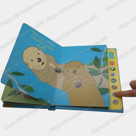 Children Book with Sound Module, Music Book