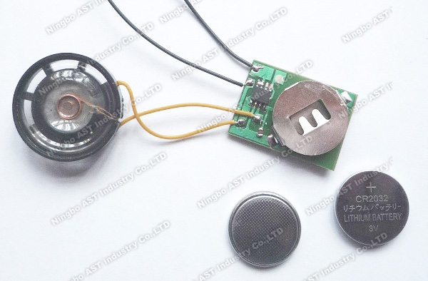 Sound Module for Bottle Opener, Sound Chip