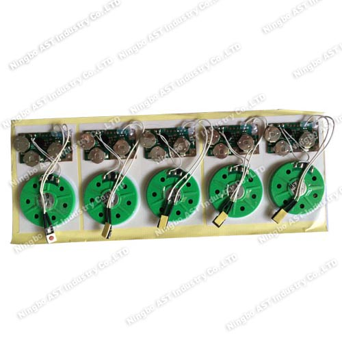 Sound Module, Voice Chip, Sound Chip,Pre-recorder Module