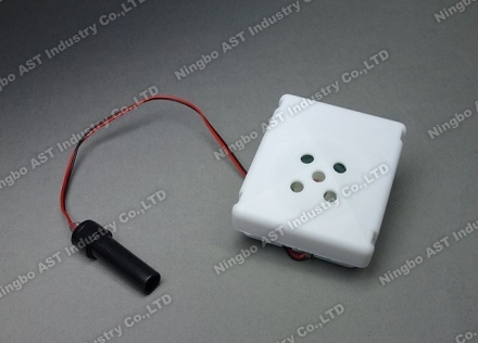 Voice Recorder, Music Box, Digital Recorder, Easy Button