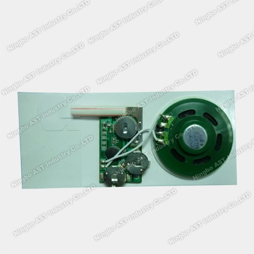 Greeting Cards Sound Chip, Slide Tongue Sound Module