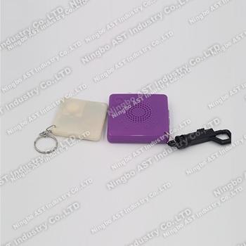 S-4202B  Digital Keychain, MP3 Keychain, USB Keychain