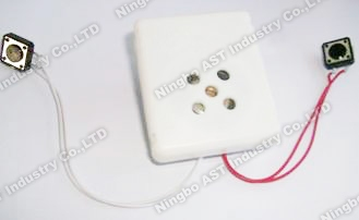 Sound Box for Stuffed Toy, Sound Module, Voice Module