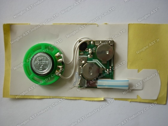 Sound module for greeting cards,vocal module,sound chip,voice module,Music module