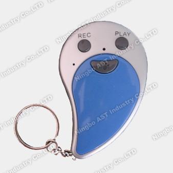 Keychain, Key Chain, Voice Keychain, Recordable Keychains