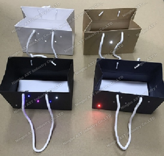 LED Light Bag, Paper Bag, Recordable Gift Bag