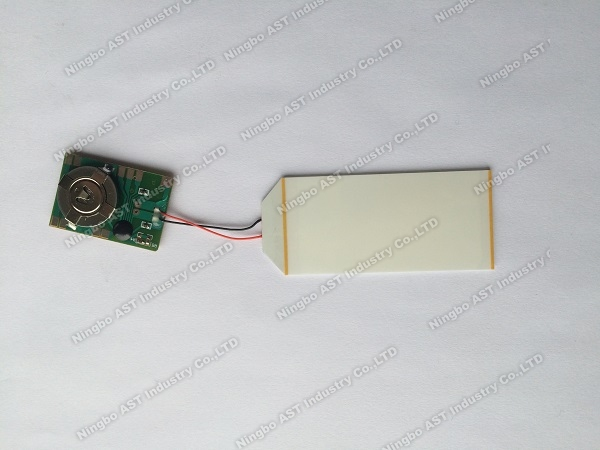LED Flash Modules,POP Display Flasher, LED Flashing Light