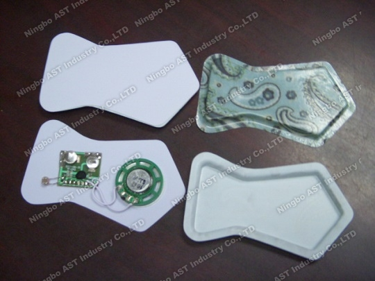 Fish Shape Voice Recorder,Sound Module, Voice Module