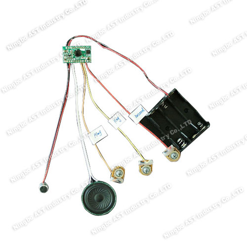 Voice Recorder, Sound Chip, China Recordable Sound Module