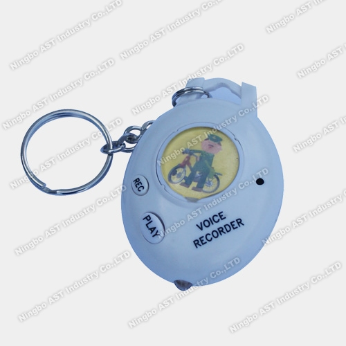 Voice Keychain, Photo Voice Recorder, Digital Keychain