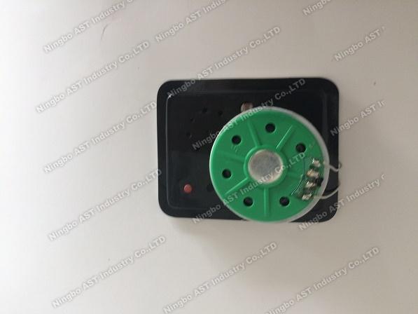 Ultrathin Voice Recorder, Sound Module