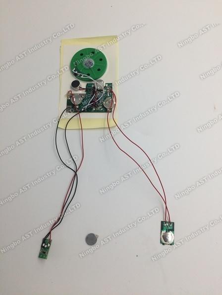 Music Module, Voice Module, Talking Module