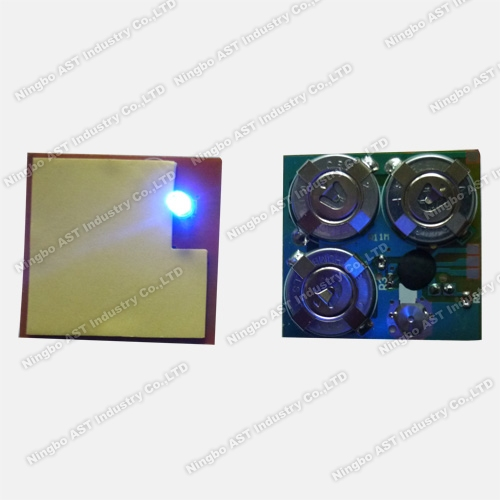 Blinking LED Module, LED Flash Module, Wireless LED Blinking Module