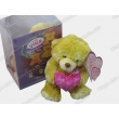 Recordable Plush Toy