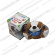 Plush Toy, Stuffed Toy, Recordable Stuffed Toy