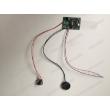 China Sound Module, Voice Chip, Sound Module, Pre-Record Sound Module