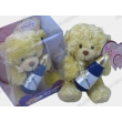 Music Soft Toy, Plush Toy, Stuffed Toy, Recording Plush Toy